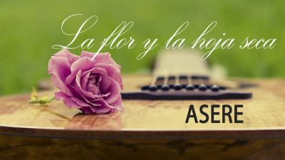 La flor y la hoja seca — Asere