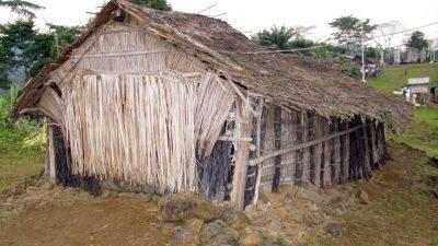 Начало фестиваля семьи Насако в Камеруне