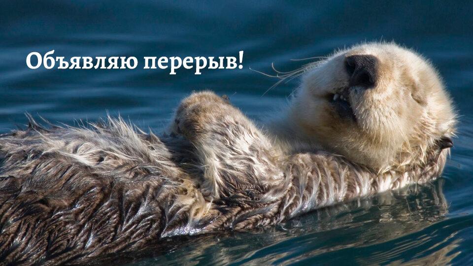 obyavlyayu-pereryv.jpg