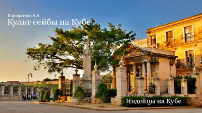 Культ сейбы на Кубе — Бородатова А.А.